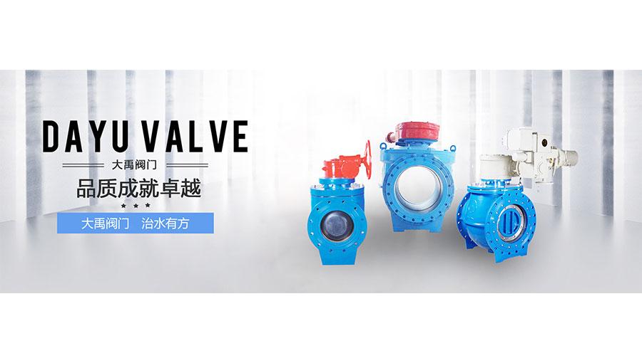 https://www.chinatt315.org.cn/static/active/2021315/dayu-valve-2.jpg